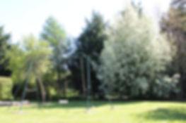 cour-arboree-domaine-sologne