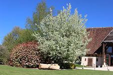 salle-mariage-domaine-campagne
