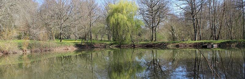 L'étang des Merciers