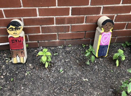 Garden Blog 6/29/20