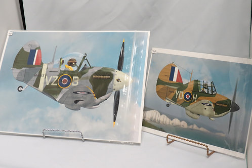 Aircraft Caricature Prints - Assorted
