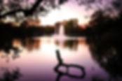 lakeside-park-night.jpg
