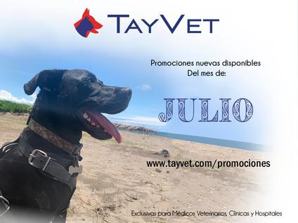 Promociones Julio