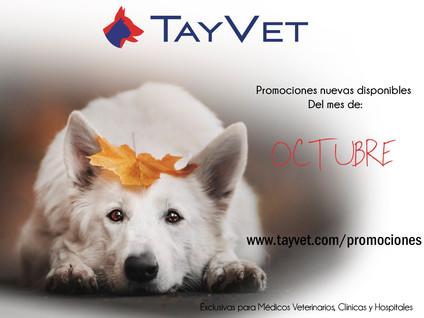 PromocionesOctubreGB.jpg