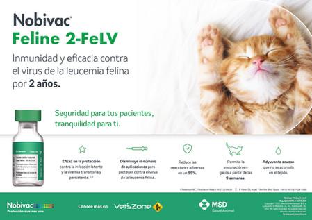 Vacuna Leucemia Felina