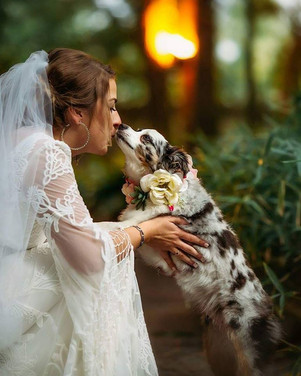 Pets are welcome for weddings in The Gardens