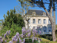 house front and wisteria in May