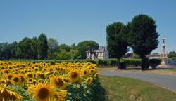 Epargnes village sunflowers