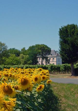 View to Le Logis d'Epargnes