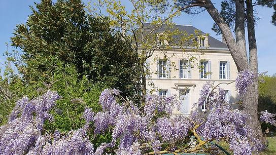 House with wisteria.jpg