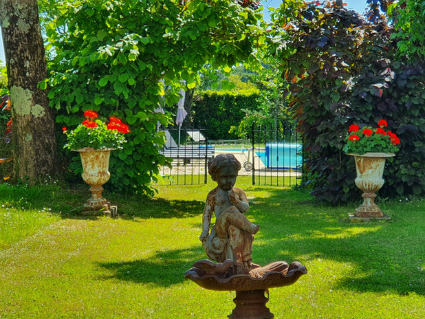summer in the front garden