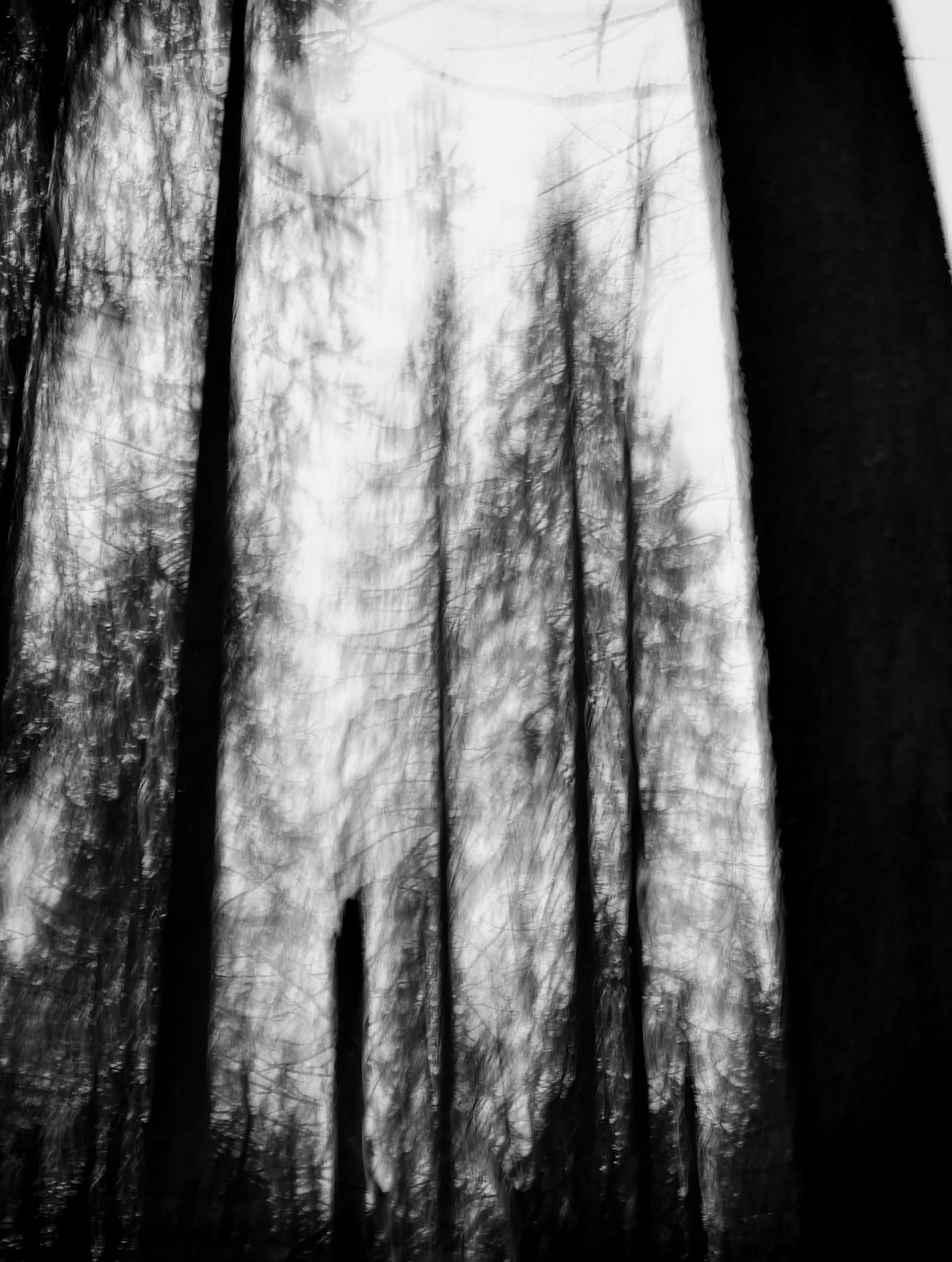 AncientShadows