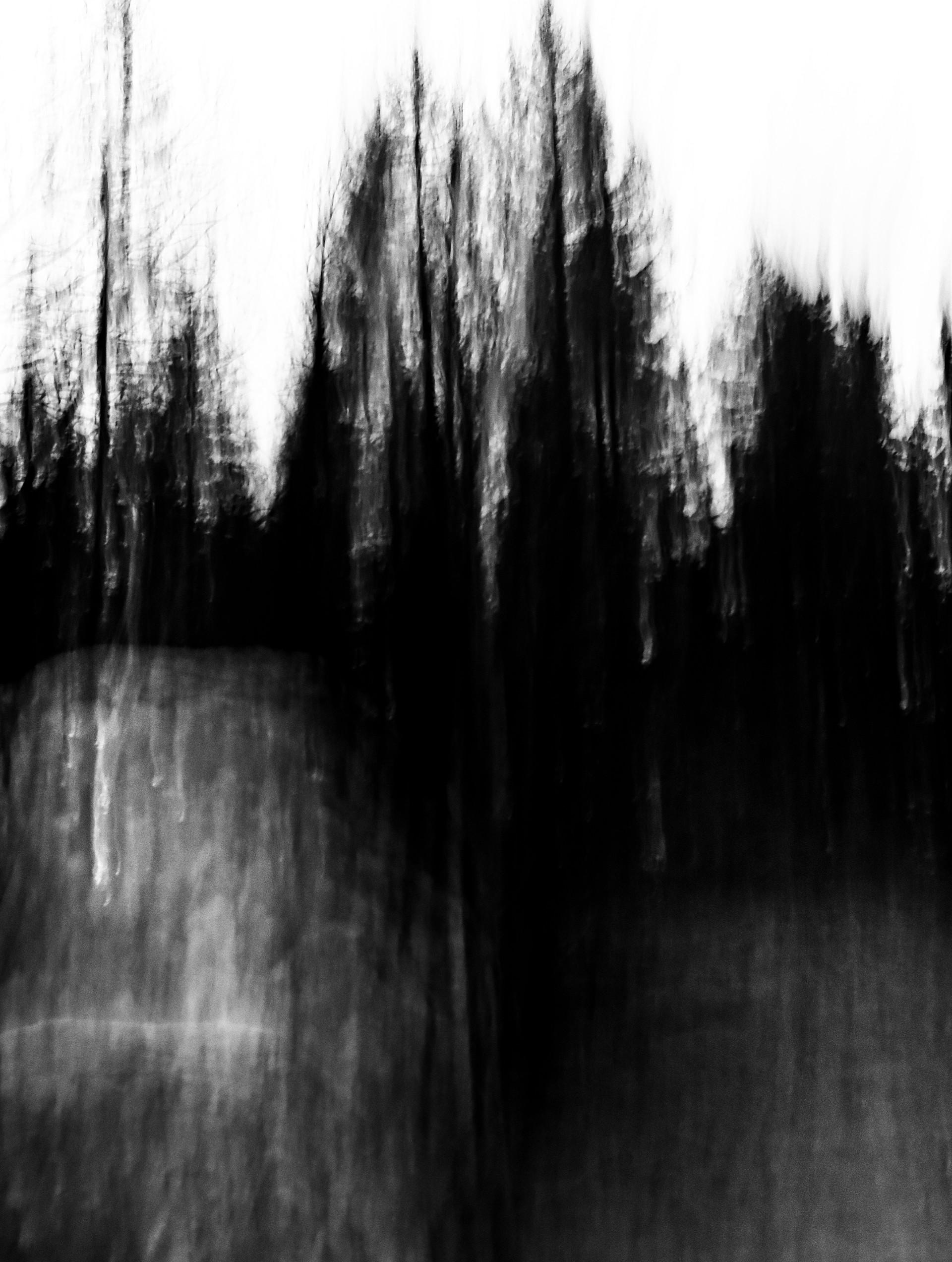 SpiritOfForest