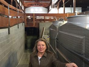 Linda Donovan uses Oregon wine to help revitalize Medford