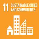 UN SDG 11.png
