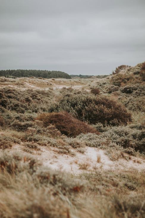 Nicky-Gennburg-Photography-Zandvoort-Zui