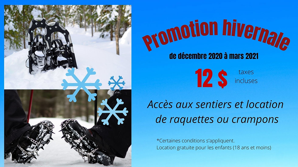 Promotion hivernale 2020.jpg