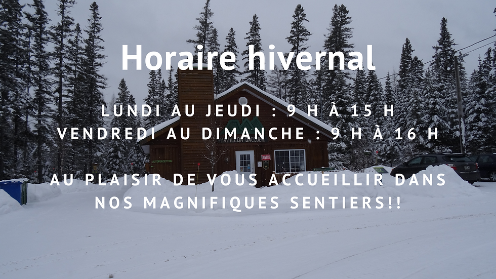 Horaire hiver 2020.png