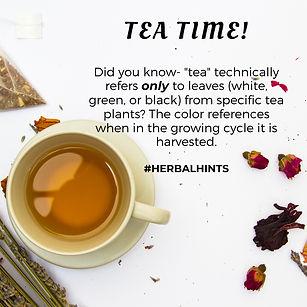 #HerbalHints