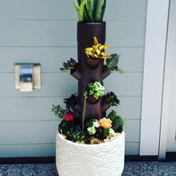 succulents-succulentart-verticalgarden-v
