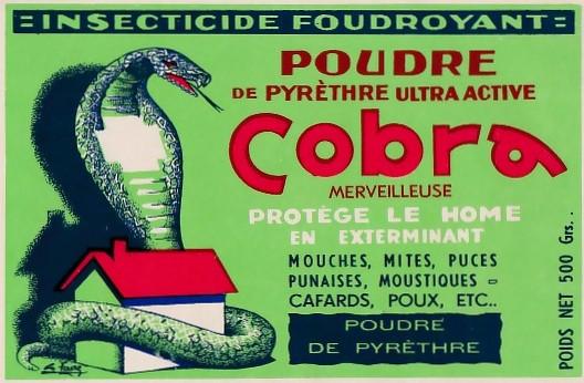 Cobra_années_30.jpg
