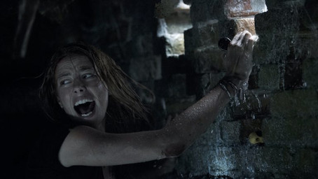 Crawl Blu-ray review