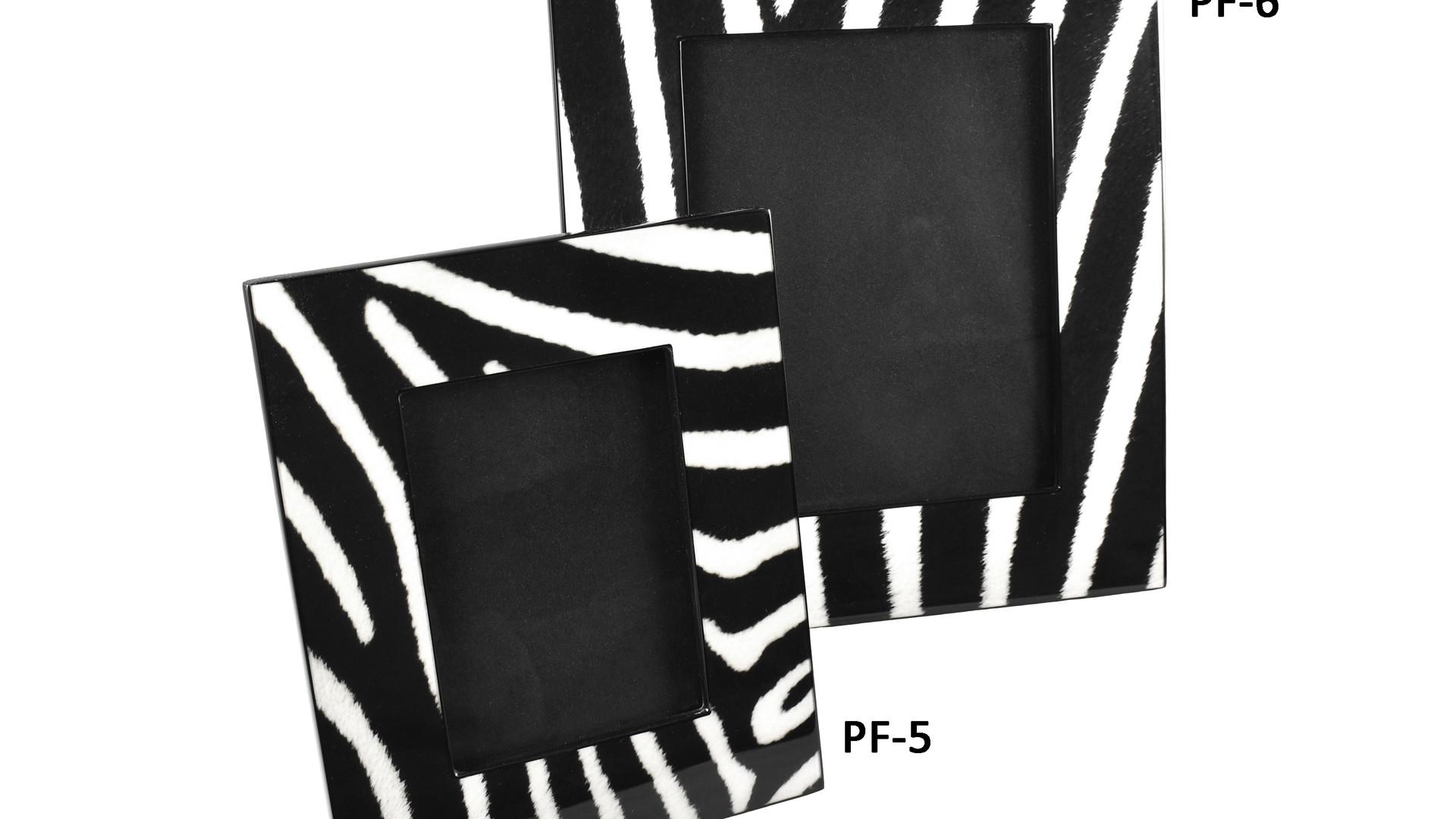 Zebra- Picture Frames