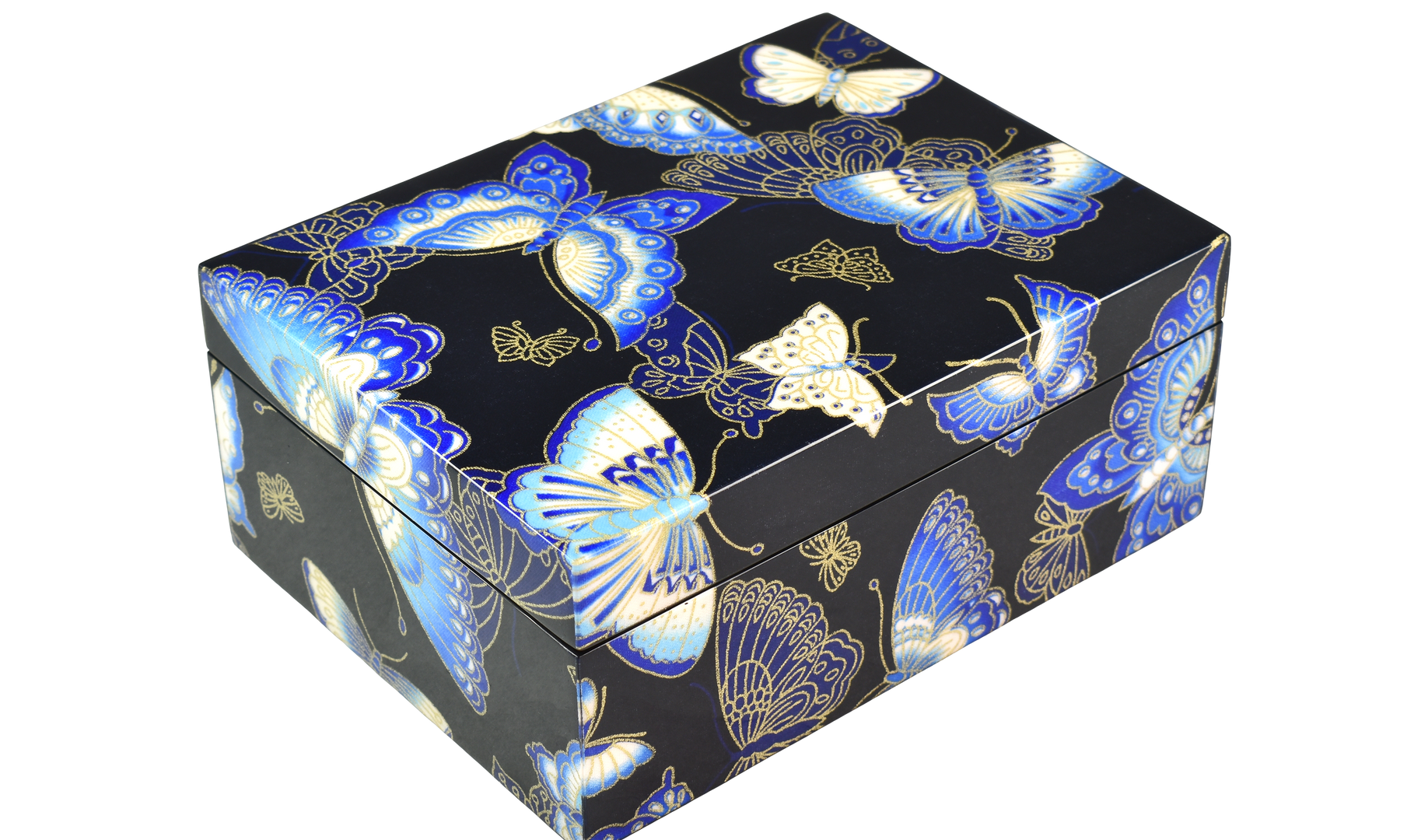 Butterflies - Medium Box