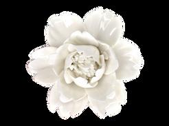 White Porcelain Flower