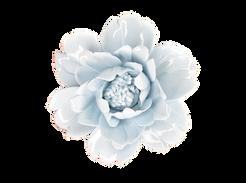 Blue Porcelain Flower