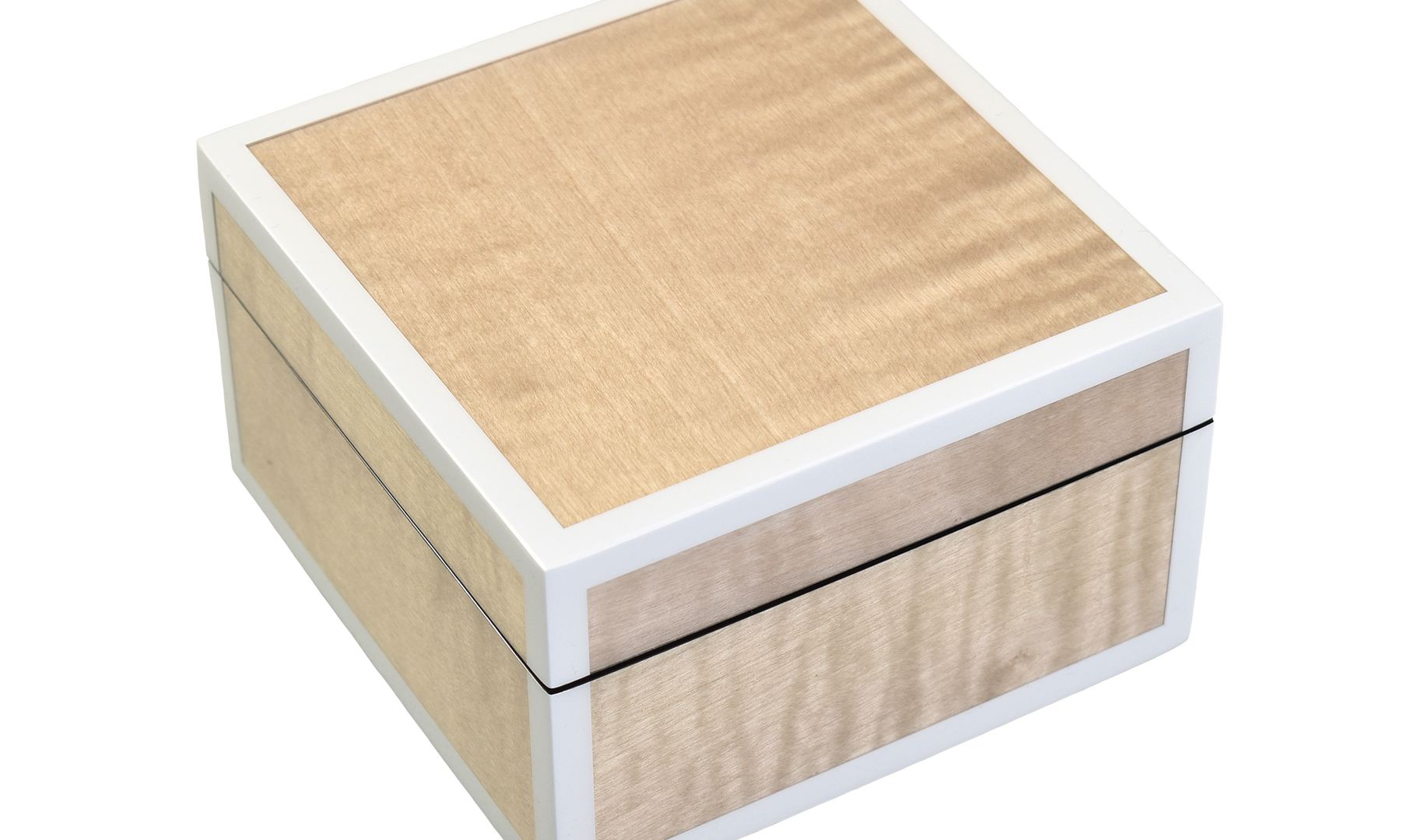 Sycamore with Silver Dollar- Square Box