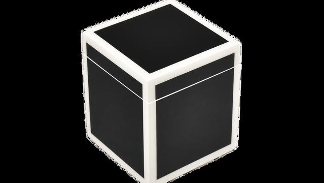 Black with White Trim- Q-Tip
