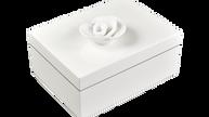 White- Medium Handle Box