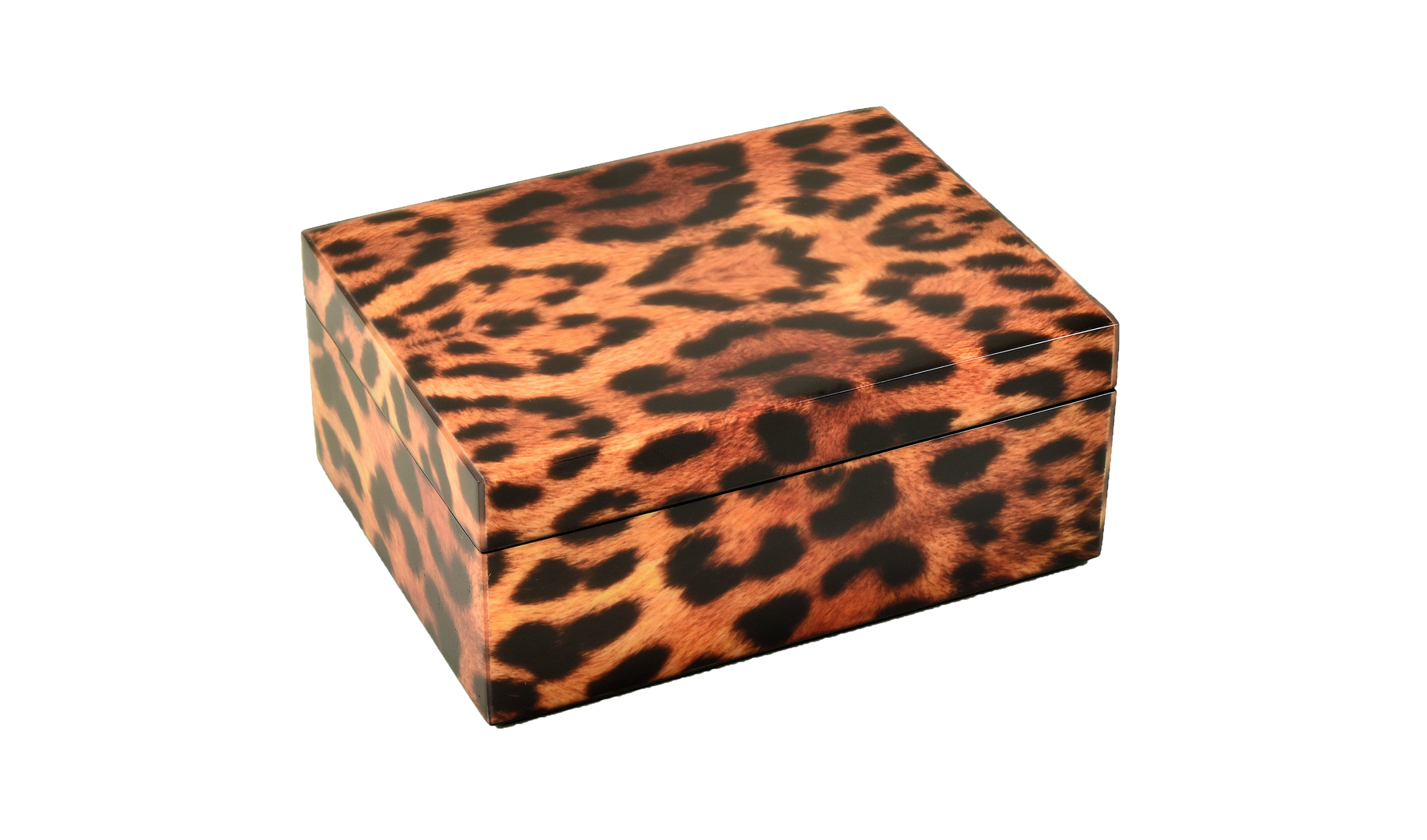 Cheetah- Medium Box