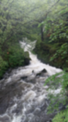 Nature La Tour d'Auvergne