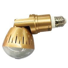 gold bulb down.jpg