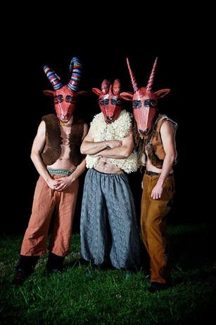 Mammalia Drummers