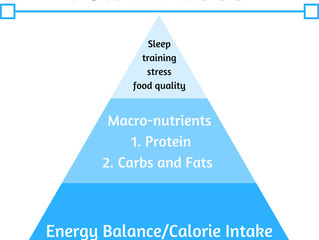 Hierarchy of importance for fat loss