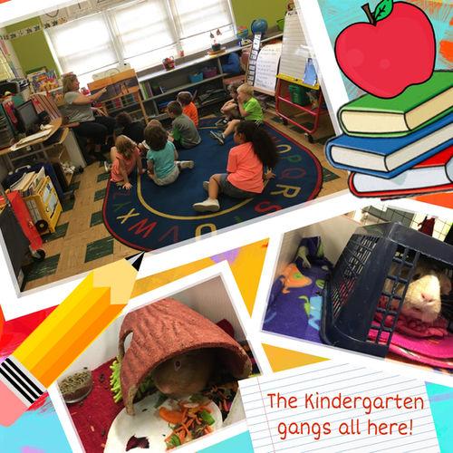 kindergarten gang.JPEG