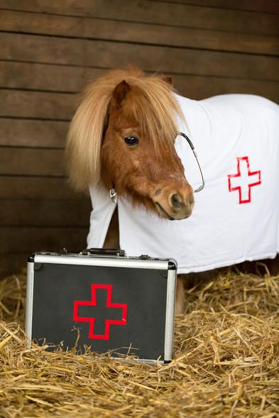 Dr.Pony016.jpg