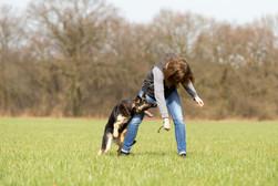 HundeMenschen095.jpg