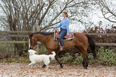 HorseDogTrail73.jpg