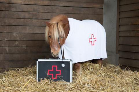 Dr.Pony005.jpg