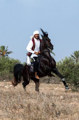 Berber102.jpg