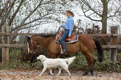 HorseDogTrail67.jpg