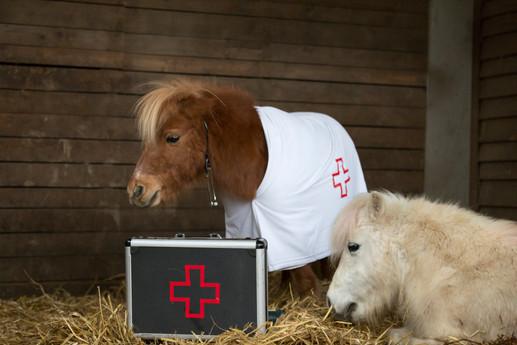 Dr.Pony029.jpg