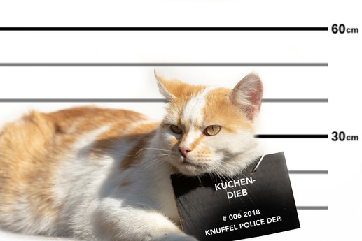 Verbrecher009.jpg