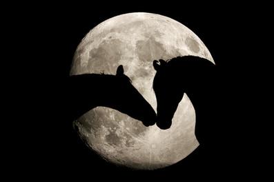 Mond01.jpg