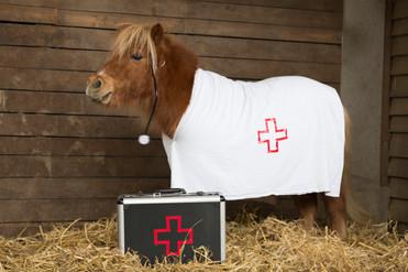 Dr.Pony004.jpg