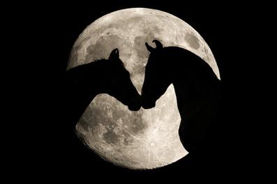 Mond02.jpg